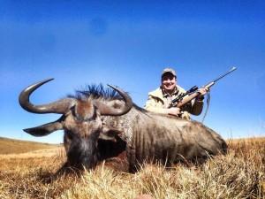 Blue Wildebeest Hunting