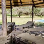 Giraffe Camp