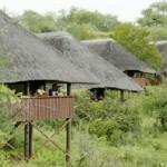 Nkwazi Bush Camp