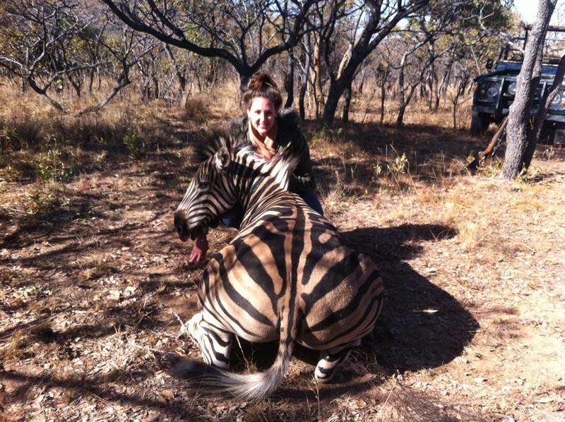 Zebra Hunting
