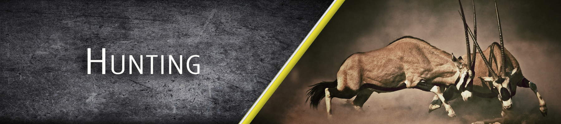 HUNTING-BANNER